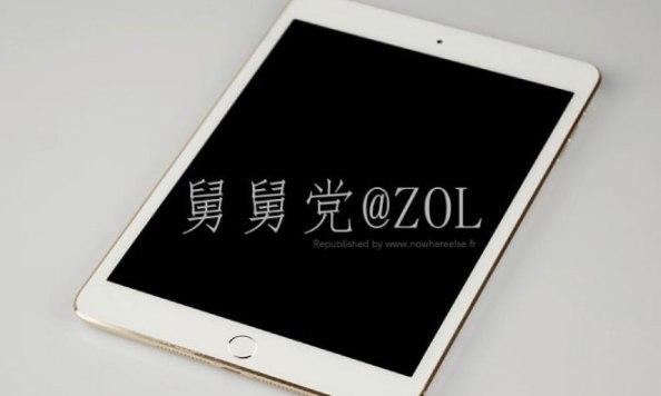 gold-mini-2-20131022