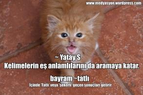 ~ yatay s